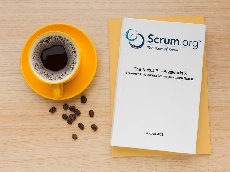 Read more about the article Skalowanie Scruma – czym jest Nexus?